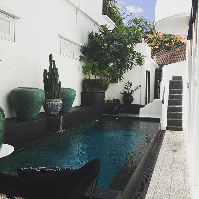 Bali Paradise🌴