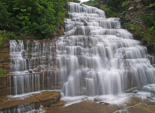 Hector Falls, Allegheny National Forest