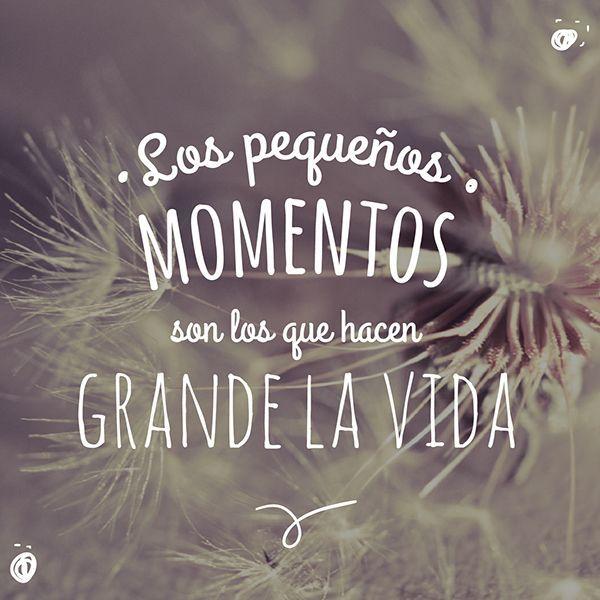 """""""Los pequeños momentos son los que hacen grande la vida"""" Estas frases cortas de la vida te van a encantar. - Frases de la vida para reflexionar   #frases #pensamientos"""