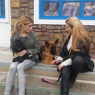 #εκπαιδευση_σκυλων  Η φιλοσοφία μου για την εκπαίδευση των σκύλων ξεκίνησε πριν 13 χρόνια περίπου και συνεχίζεται μέχρι σήμερα. Παρόλη την εμπειρία αυτών των χρόνων που προέκυψε στο χώρο της εκπαίδευσης σκύλων ακόμα συγκινούμε όταν μαθαίνω κάτι νέο για την εκπαίδευση των σκύλων μου.