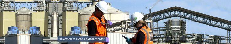 Environmental Site Assessment | Environmental Remediation | Soil Remediation