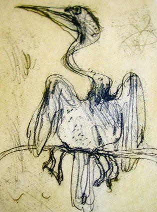 Pelican - John Olsen