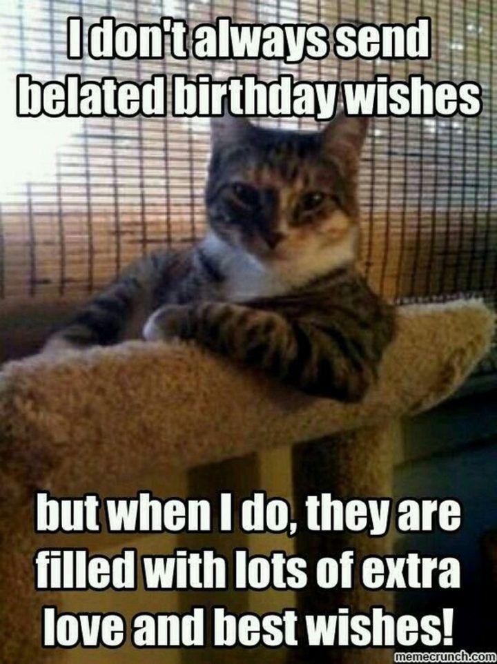 Happy Belated Birthday Cat : happy, belated, birthday, Happy, Belated, Birthday, Memes, Forgot, Quotes, Funny,, Kittens, Funny, Animal