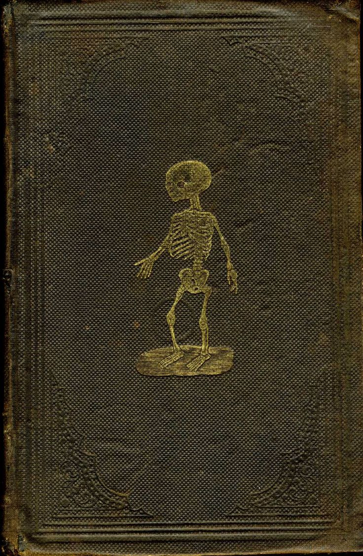 amy-addams:    Front cover of Henry H.Smith's Anatomical Atlas of the Human Body, 1859.
