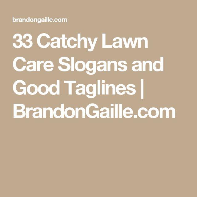 17 best lawn care images on pinterest