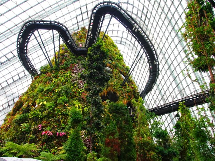 The 7-floor tower in the Cloud Forest dome at Gardens by the Bay.  Source: lunethings.blogspot.com