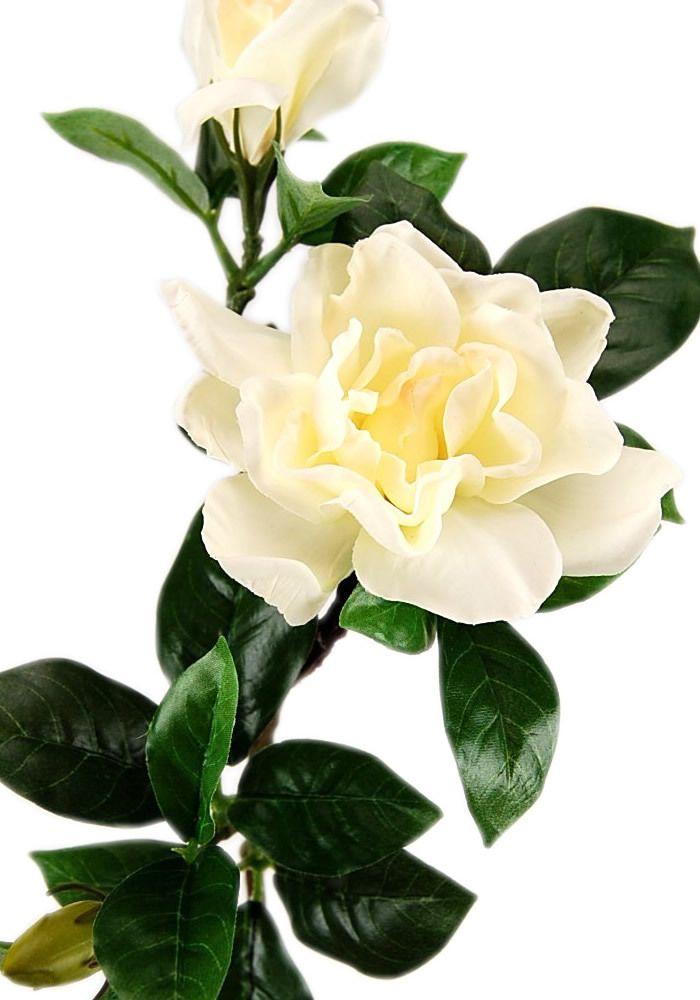 Flowers-by-Design.com - Real Touch Gardenia Spray, $6.50 (http://www.flowers-by-design.com/real-touch-gardenia-spray/)