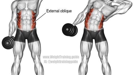 Dumbbell side bend exercise