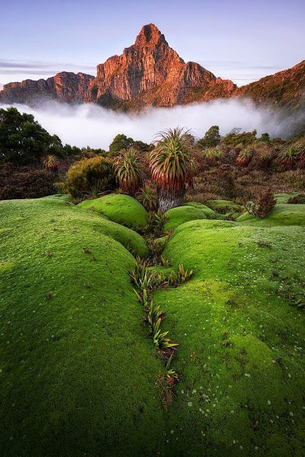 Mt Anne illuminated by the sun's morning warmth, South-West National Park, Tasmania, Australia