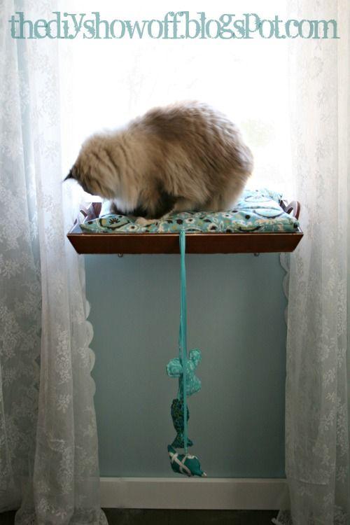DIY cat window perch (from old breakfast tray)