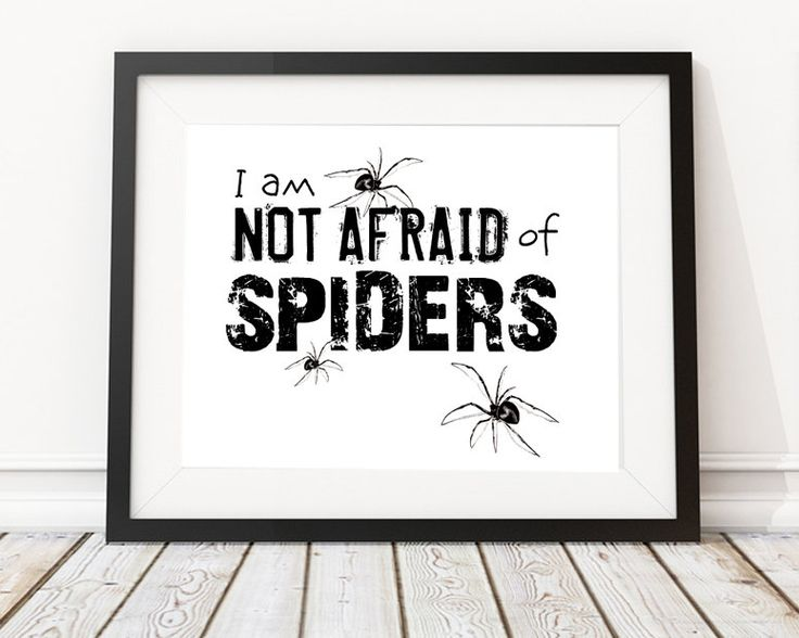 Spider wall art halloween party printable halloween wall decor not afraid of spiders spider poster