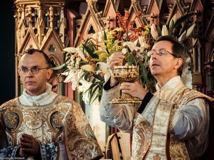 16-Immaculée Conception 2013 – Ecce Agnus Dei, ecce qui tollit peccata mundi | Liturgia  http://www.schola-sainte-cecile.com/2013/12/09/photos-enregistrement-sainte-messe-de-la-fete-de-limmaculee-conception/
