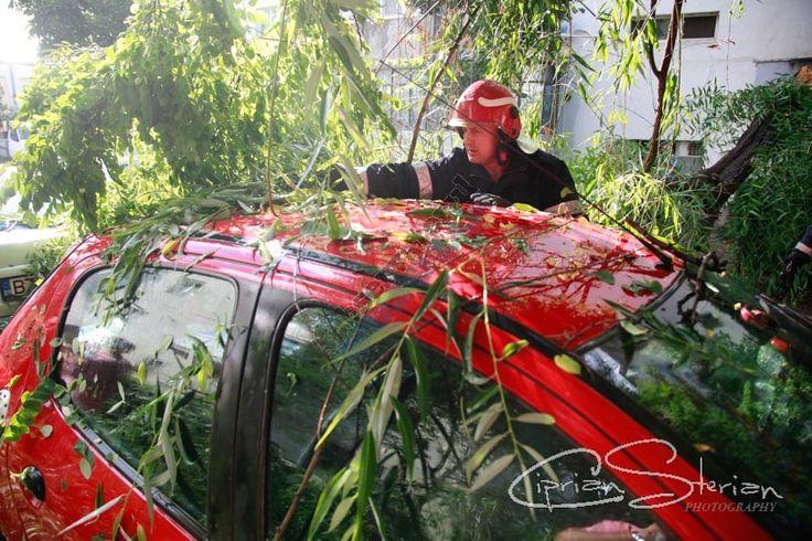 Un copac a căzut peste două mașini în Broșteni - https://goo.gl/7CxipF