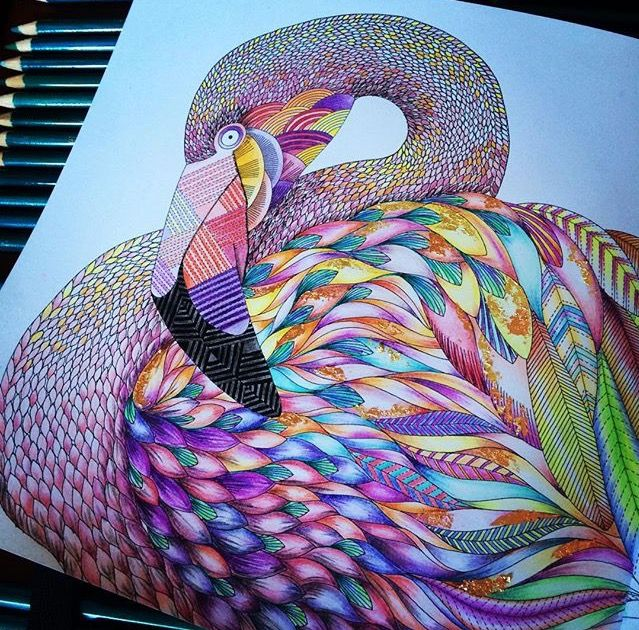 Adult Coloring Books Animal Kingdom Flamingos Joanna Basford Instagram Posts Peacock Zentangle Angeles