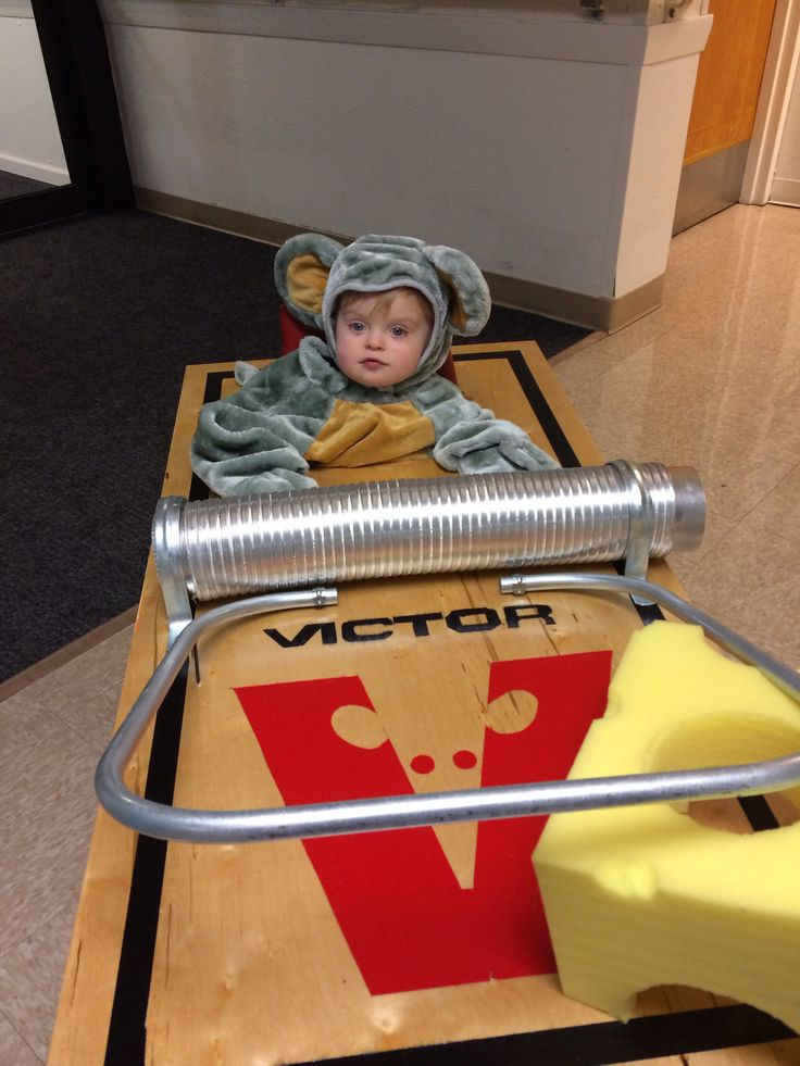 25 Best Images About Mousetrap Halloween Costumes On