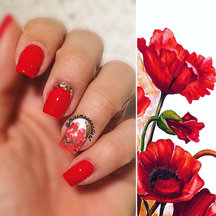 Red elegance, color picked by @erikanathalie #nailart #nailartdesign #art #poppyflower #red #nailpolishaddict #nailpolish #oriflame #coralred #readyforwednesday #nails2inspire #adornnails #allaboutnailsofficial #waterdecals