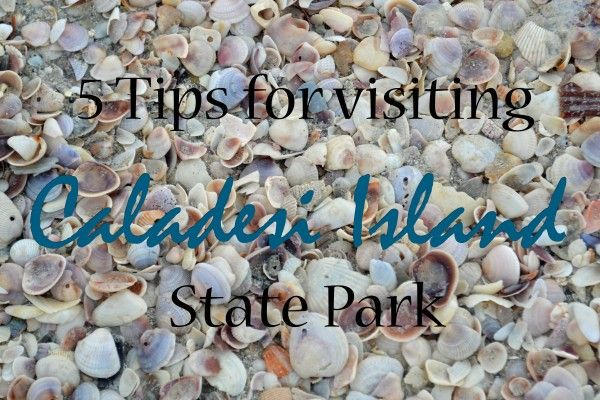5 tips for visiting Caladesi Island State Park. It's a great place to find undeveloped beaches and lots of sea shells! | tipsforfamilytrips.com