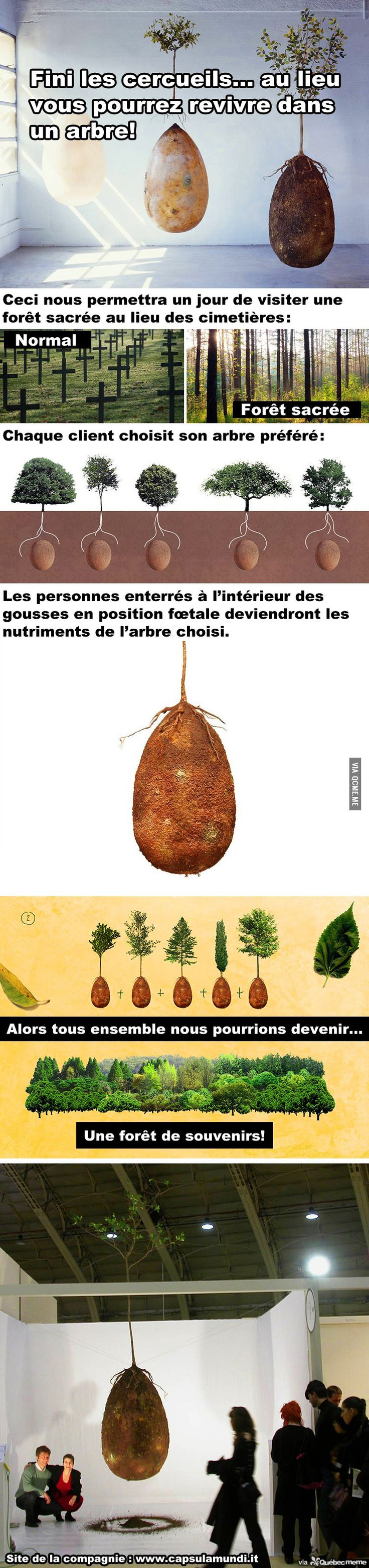 Capsules biodégradables