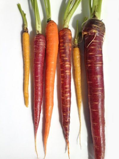 Rainbow carrots - I would love to grow a variety like this! I'm still looking for purple carrot seeds. (Link to rainbow carrot salad recipe via What Grace Cooked)