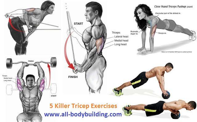 1000+ images about bodybuilding on Pinterest   Men's Chest ...