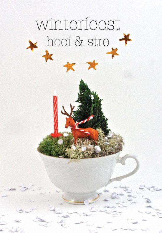 Winterfeest hooi & strooi Kim Welling