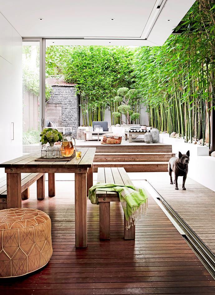 7 Ways To Optimise A Small Garden Indoor Outdoor Living Backyard Outdoor Living