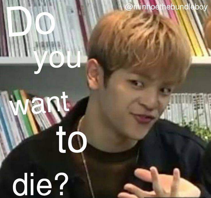 When Someone Insults Kpop Stray Kids Memes Insults Kids Kpop