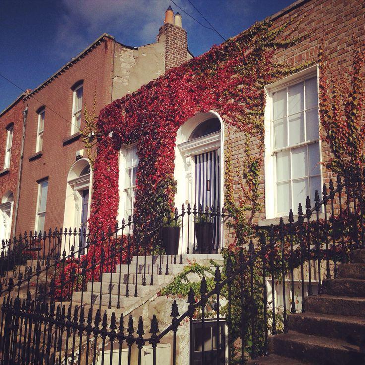 Beautiful houses in Dublin