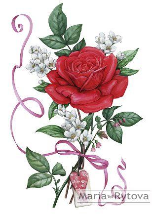 Red rose & jasmine