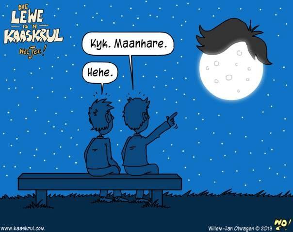 Maanhare... ~ Die lewe is 'n kaaskrul