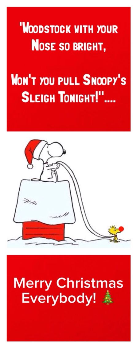 """""""Woodstock with your Nose so Bright, won't you pull Snoopy's Sleigh Tonight!""""....'Merry Christmas Everybody!"""""""
