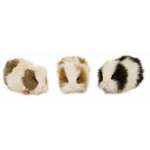 Guinea Pig Toys : Best images about stuffed animals on pinterest toys