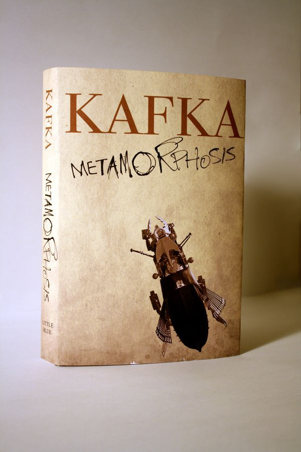 Literary analysis on the transformation in the Metamorphosis by Franz Kafka?