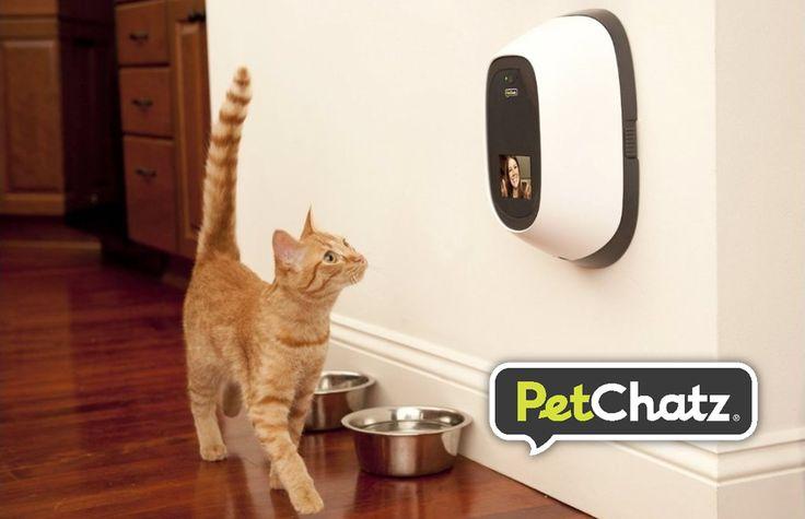 PetChatz: Hogy felhívhassátok kisállataitokat, amikor hiányoznak.