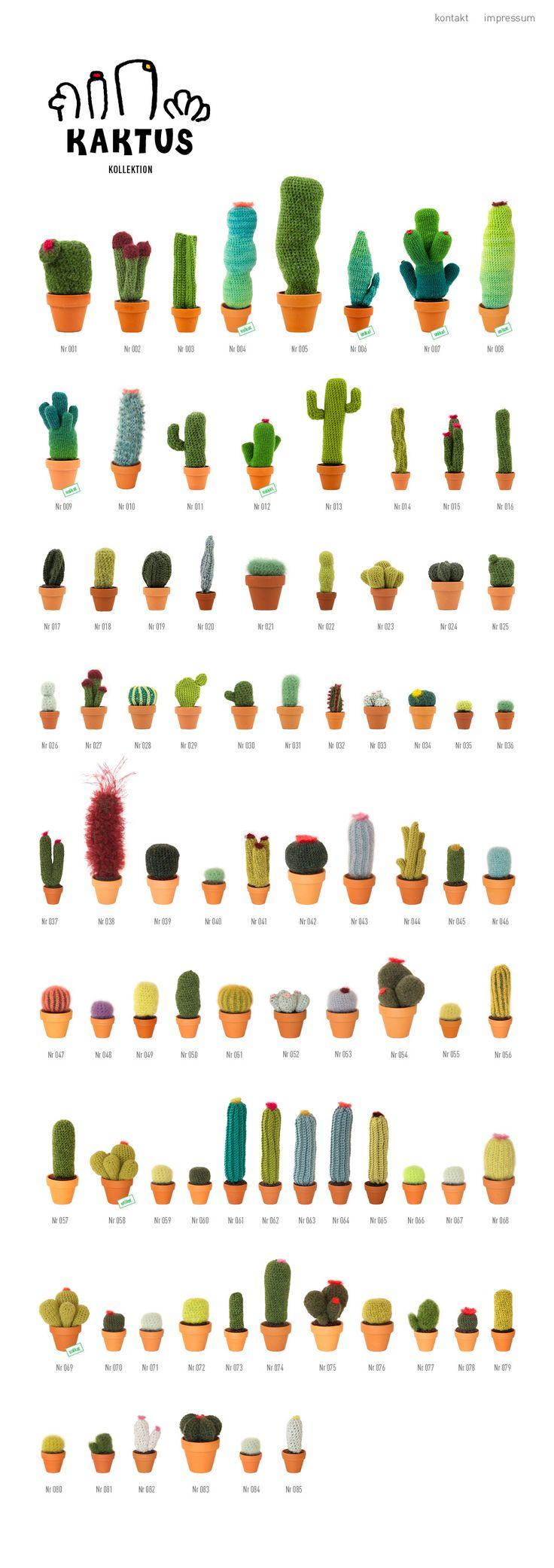 Cactus de punto