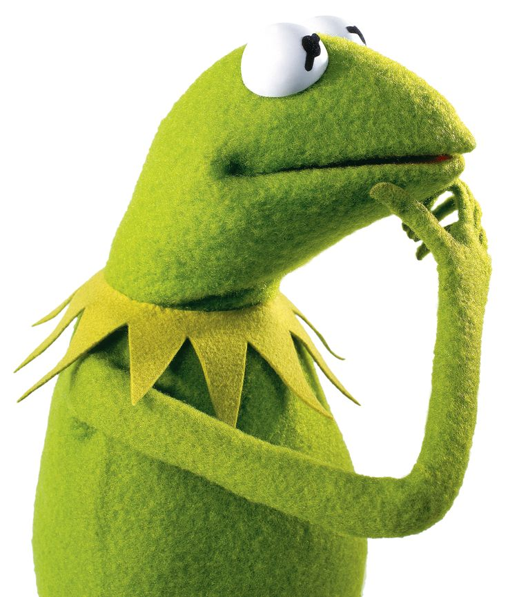 Kermit contemplates how to make a fuzzy navel.