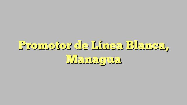 Promotor de Línea Blanca, Managua
