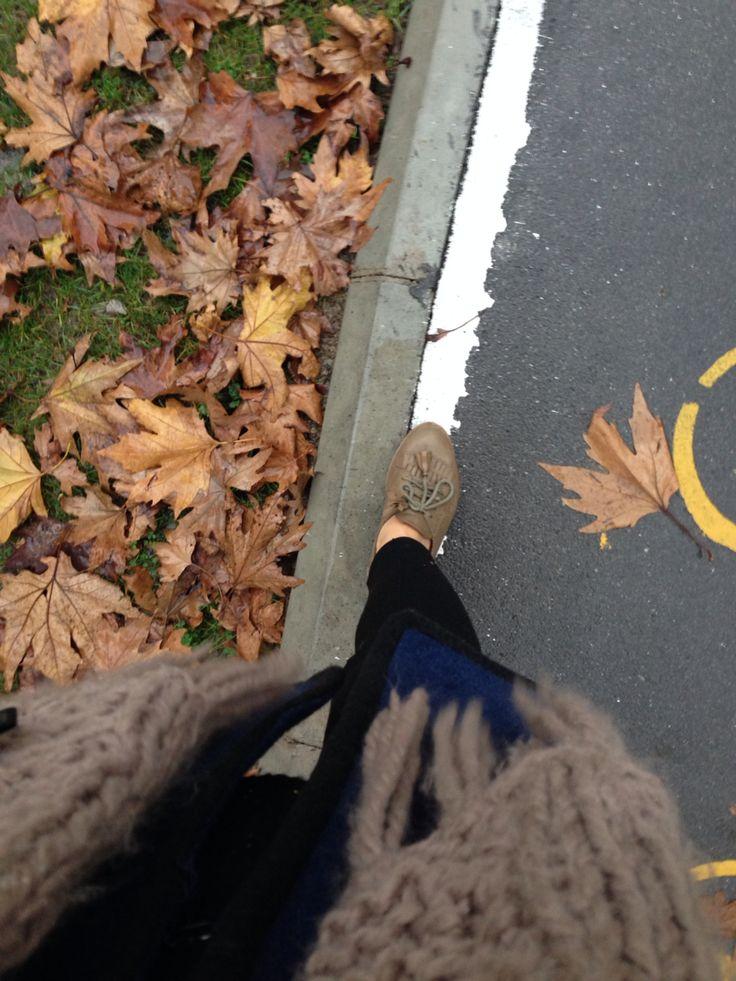 Sonbahar görünümlü kış