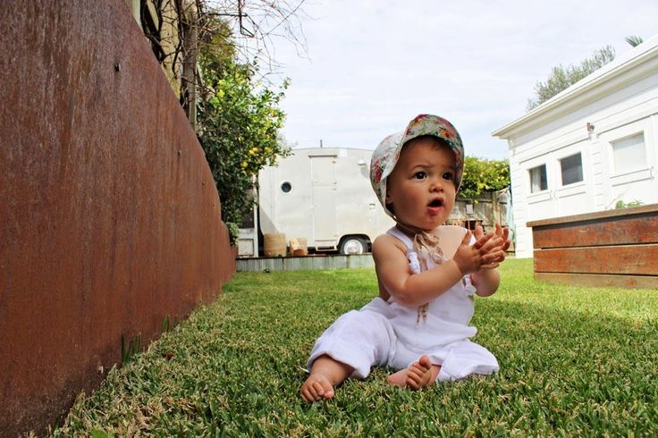 Zephyr on the grass