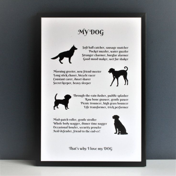Dog poem, dog lover poem, personalised dog poem, dog poem, gift for dog lover, poem about a dog, poem about dogs, by Designerpoems on Etsy