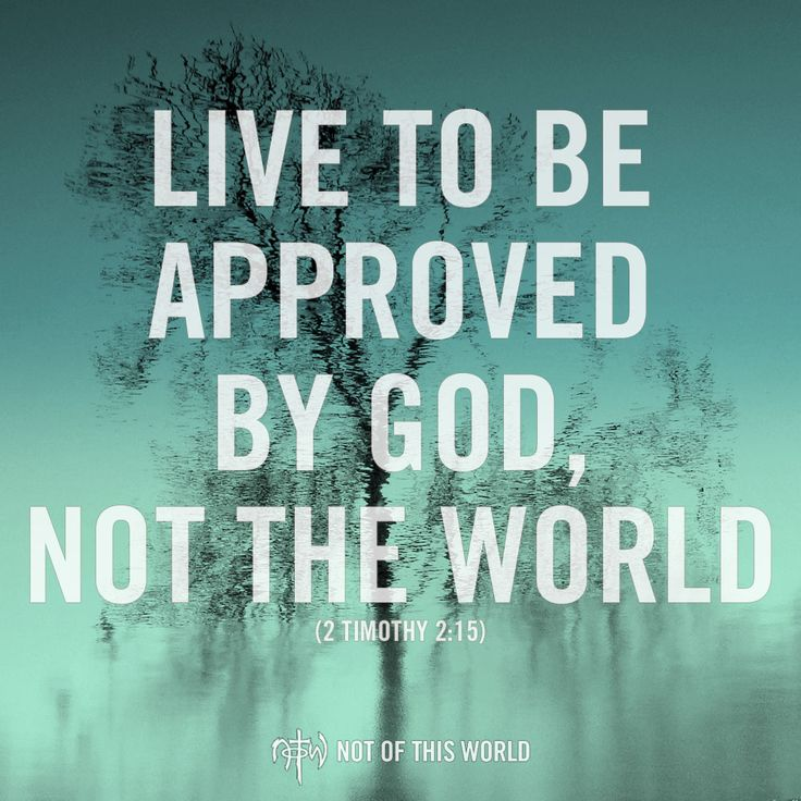 """2 Timothy 2:15  """"Work hard so you can present yourself to God and receive his approval. Be a good worker, one who does not need to be ashamed and who correctly explains the word of truth."""""""