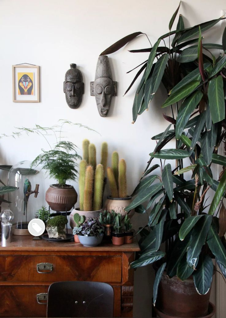 GREENERY LESSONS FROM #AAHOUSECRUSH – Abigail Ahern
