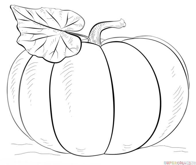How to draw a pumpkin | Step by step Drawing tutorials