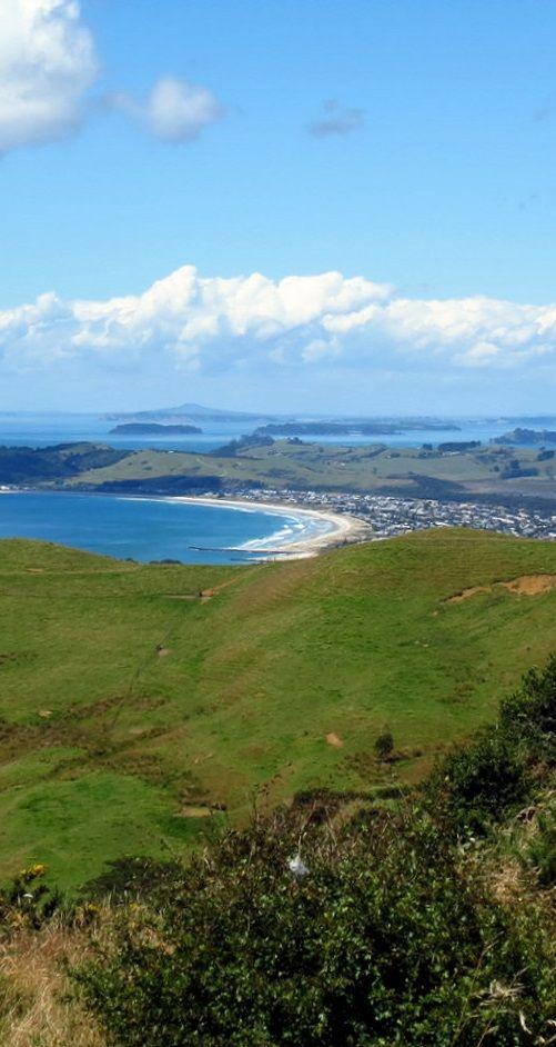 Goat Island beach - NZ