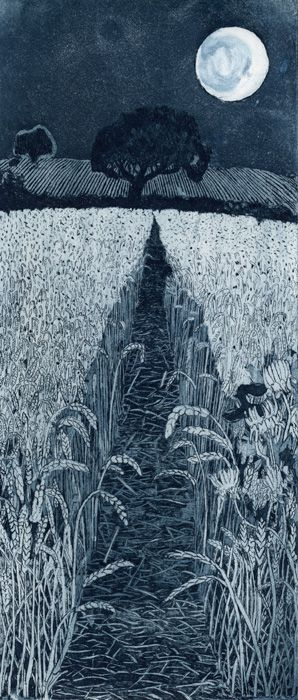 Moonshine by Janis Goodman #illustration #field #night #moon