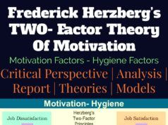 Herzberg's TWO- Factor Theory of Motivation | Hygiene | Satisfier