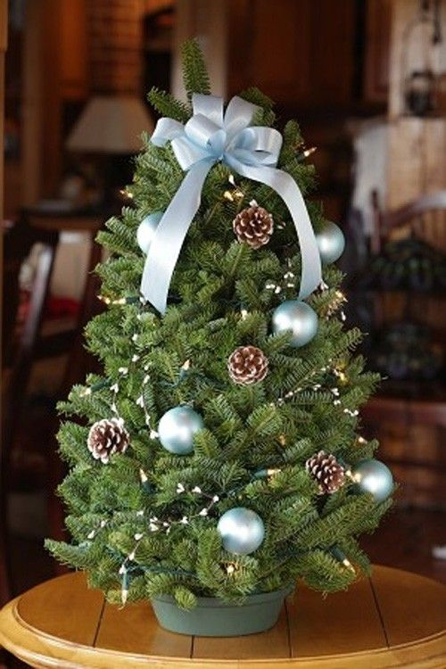 17 Best images about Christmas tree planter decor on ...
