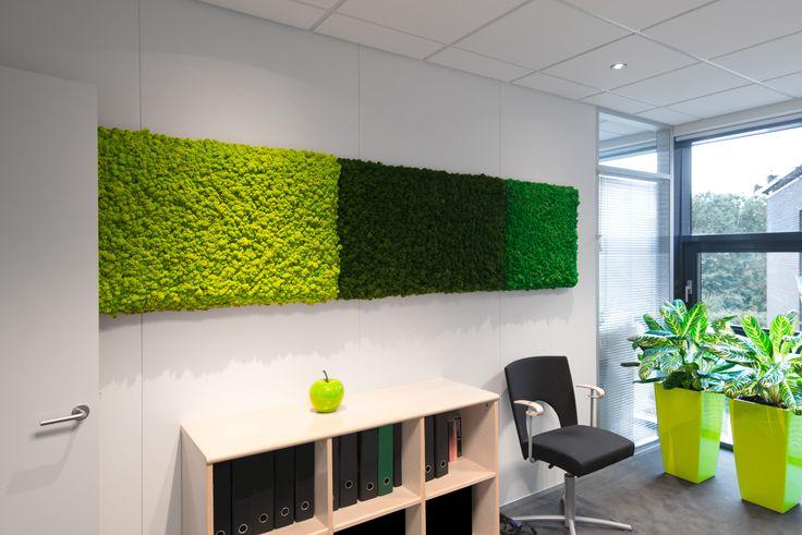 Kontor indretning med mosvægge. mosvægge kan leveres i et have af ...