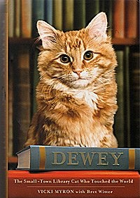 dewey the library cat book summary essay Dewey the library cat: a  favorite library cat can inspire a new audience of  how his story culminated in this book if you are a cat lover, dewey is .