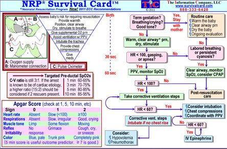 Neonatal Resuscitation Program Medical Reference Cards - NRP Emergency Pocket Guide